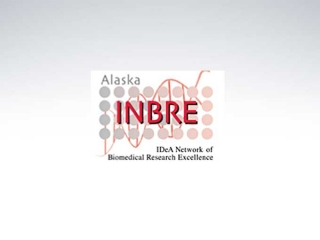 Inbre alaska